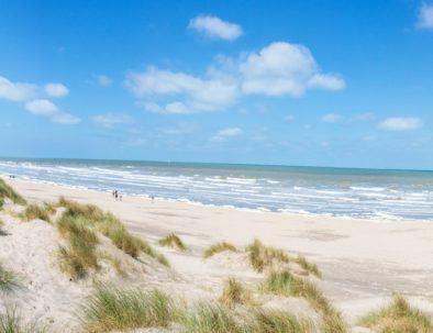 strand, duinen en zee panorama